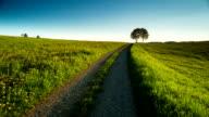 CRANE DOWN: Green Field Landscape video