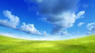 Green field over blue sky video