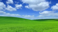 Green field time lapse-HQ 1080p video