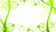 Green Flower Frame - Loop video