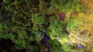 Green Getaway Exotic Paradise, Kauai, Hawaii video