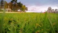 Green grass on the yard of a house video