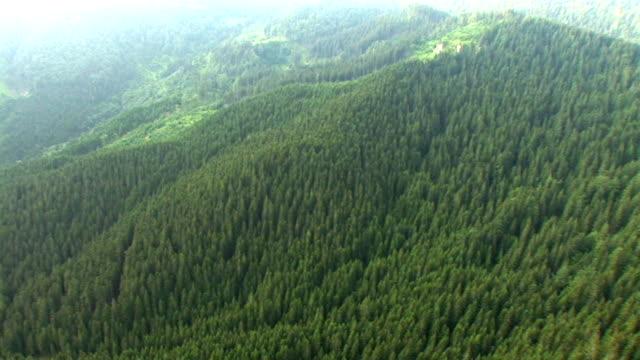 HD: Green hills video