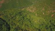 Green Landscape - Aerial video video