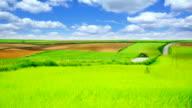 Green landscape-HQ 1080p video