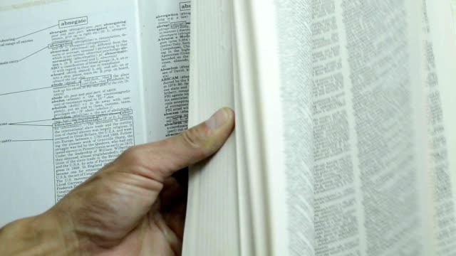 green leaf in a book video
