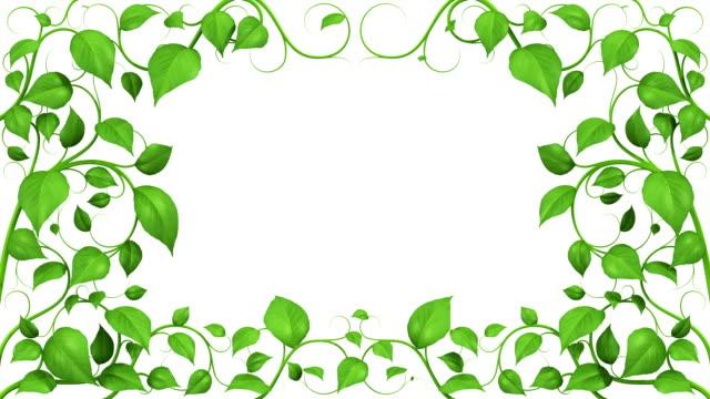 Green Leaves Growing Pattern. HD 1080. Alpha Mask. video