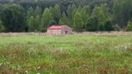 Green Meadow Landscape - Paisaje con Casa video