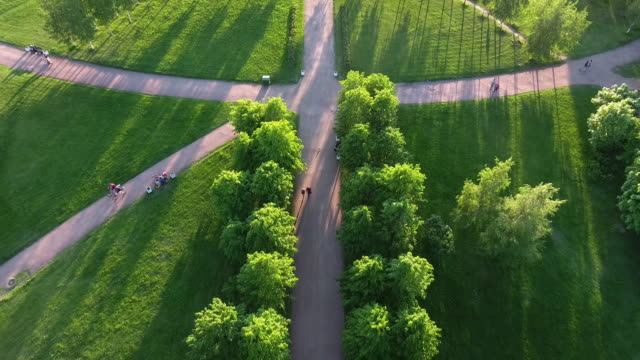 Green park in the center of the city video