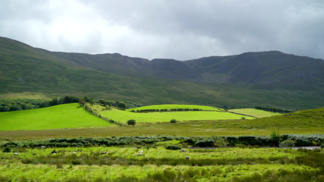 Green pasture and a mountain in Carrowmore Ireland video