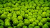 Green Peas Rotating Closeup video