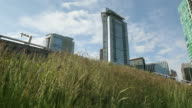 Green Roof dolly shot, Downtown Vancouver video