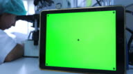 Green screen with scientist working in the laboratory video