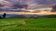 Green Terraced Rice Field in Pa Pong Pieng , Mae Chaem, Chiang Mai, Thailand Time Lapse Day to Sunset. video