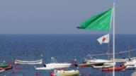 Green Warning Flag Waving with Boats video