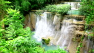 Green waterfall forest and flowing river in rainforest video