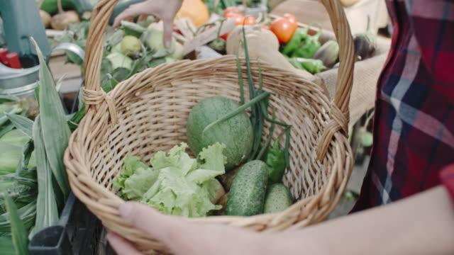 Greenhouse Vegetable Harvest video
