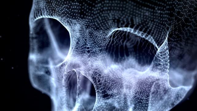 Grid of Human Skull video