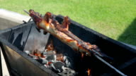 Grilled and roast suckling pig on the embers video