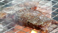 Grilled Beef video