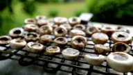 Grilled Champignons, Mushrooms video