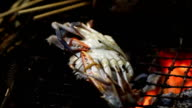 Grilled crab video