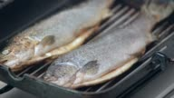 Grilled fish close up. video