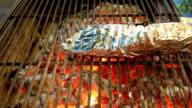 grilled fish in aluminum foil video