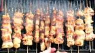 Grilled Gourmand Chicken Skewers video