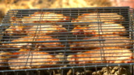 Grilled pork steaks over flames and coals, on the brazier, side view video