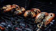Grilled prawn over the embers video
