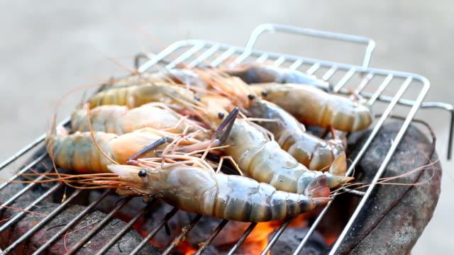grilled shrimp video