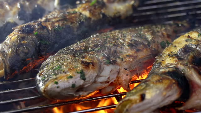 CU Grilling Fish video