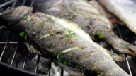 SLO MO Grilling Fish With Parsley video