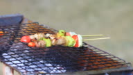 Grilling shashlik on barbecue grill video