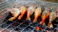 Grilling shrimp video