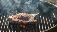 Grilling steaks on a charcoal barbecue in summer video