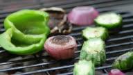 Grilling Vegetables and mushroom video