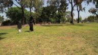 grim reaper walking a dog video