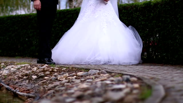 Groom and Bride holding hands video