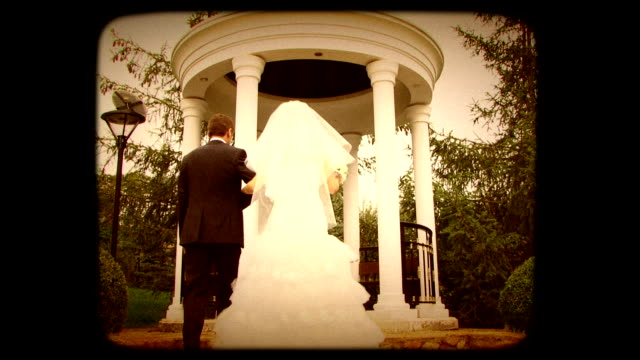 Groom And Bride In Pavilion video