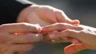 Groom puts ring on brides finger, closeup video