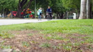 Group bicycle exercise in the park video