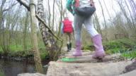 Group Of Children Crossing Stream On Wooden Bridge video