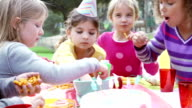 Group Of Children Having Outdoor Birthday Party video
