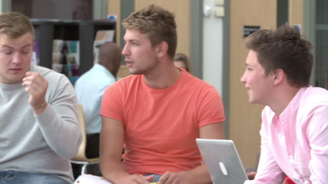 Group Of College Students Sitting And Talking Together video