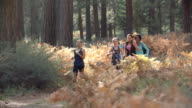 Group of five young adult women running in a forest video