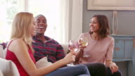 Group Of Friends Drinking Wine At Home Shot On R3D video