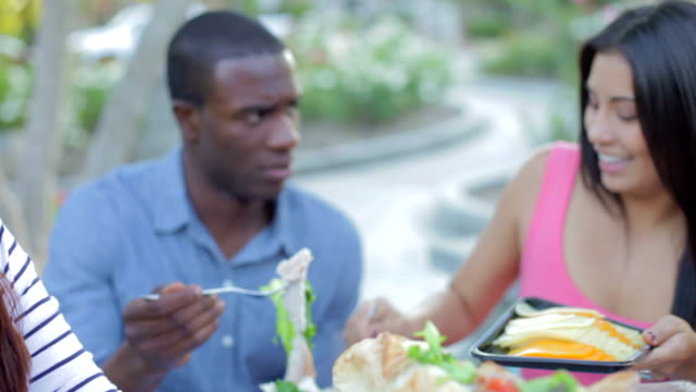 Group Of Friends Enjoying Outdoor Meal Together video