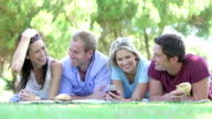 Group Of Friends Enjoying Picnic Together video